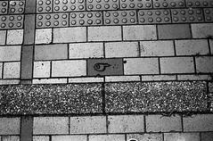 Tadpole or Killifish? (Purple Field) Tags: contax g2 rangefinder carl zeiss g planar 35mm f20 fuji neopan iso400 presto bw monochrome film analog kurume fukuoka japan street walking