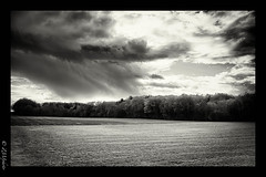 Insertitude (zmi66 - ZMIphoto) Tags: show trip light people blackandwhite white black art nature switzerland nikon raw suisse n nb lausanne automn nuage fort romand d700 romandsuisse