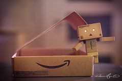 danbo (educifu photo ) Tags: color robot amazon nikon carton edu gel aburrido danbo cifuentes strobist d300s