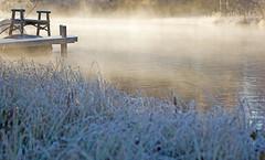 Vågor (EvasSvammel) Tags: cold nature river frost waves sweden ne å vågor rimfrost kyligt