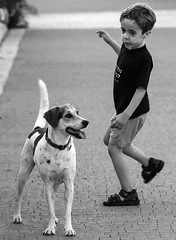 Dance me to the end of love (ybiberman) Tags: boy portrait bw dog israel dancing candid jerusalem streetphotography thelittledoglaughed