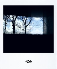 "#DailyPolaroid of 23-11-12 #56 • <a style=""font-size:0.8em;"" href=""http://www.flickr.com/photos/47939785@N05/8218899220/"" target=""_blank"">View on Flickr</a>"