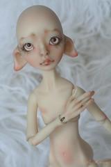 commission makeup/bodu blushing (heliantas) Tags: beige doll body handmade wig mohair bjd humpty dumpty mayfair dyed blushing aleah faceup stuling