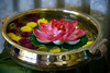 Arangetram 0445 (kalyani Mantr) Tags: vani kalyani aneesha arangetram ronya palvi