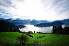what should be called amazing (dyorex) Tags: light sky cloud mountain lake green nature beautiful grass landscape switzerland amazing nikon europe view natural top luzern peak wideangle lucerne rigi lucernelake