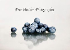 Blueberries (MaddenPhotography) Tags: food reflection kitchen fruit photography healthy artistic rustic cook fresh blueberry eat bluberries