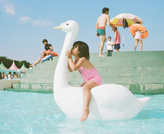 Kiss Me Please Project #7 (Toyokazu) Tags: family summer portrait pool girl beautiful animal kids swimming swan kiss child photogenic pentax67