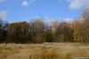 Herbst in der Heide 25.11.2012
