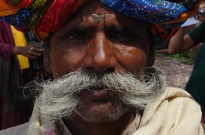 bigote 2