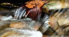 (rickhanger) Tags: autumn fall nature leaves creek stream cascade cuyahogavalleynationalpark cvnp rickhanger rickhangerphotography
