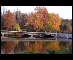Reflections (bbic) Tags: bridge autumn red lake tree pod colours toamna bbic