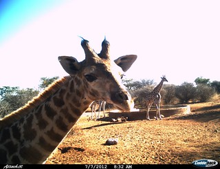 Namibia Luxury Hunting Safari 36