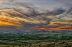 Palouse Sunset 4 (NikonDigifan) Tags: sunset washington nikon dusk farming crops nik agriculture palouse d300 easternwashington palousehills steptoebutte inlandnorthwest colorefexpro mikegassphotography