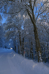 Snowy road III (RodaLarga) Tags: road snow france lumix lx5 supeyres