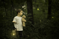 Searching for Fireflies (Phillip Haumesser Photography) Tags: light boy playing green nature boys kids forest children fun kid woods child play natural sony magic 85mm adventure imagination magical fireflies samyang philliphaumesser sonya7ii