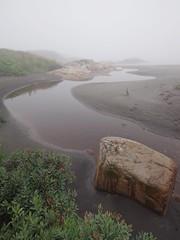 Ruisseau, prs de Sheldrake (Patrice StG) Tags: qubec voyage trip travel journal fog brouillard brume ctenord northshore golfestlaurent gulf stlawrence stlaurent ruisseau shore rivage brook