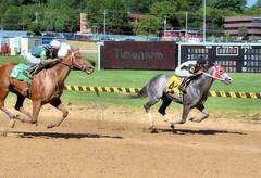 2016-08-28 (34) r6 Jose Montano on #4 Imperial Me (JLeeFleenor) Tags: photos photography md maryland statefair horseracing annual racing timonium fatrgrounds jockey   jinete  dokej jocheu  jquei okej kilparatsastaja rennreiter fantino    jokey ngi horses thoroughbreds equine equestrian cheval cavalo cavallo cavall caballo pferd paard perd hevonen hest hestur cal kon konj beygir capall ceffyl cuddy yarraman faras alogo soos kuda uma pfeerd koin    hst     ko