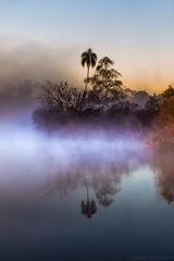 Amanecer Misionero (Javier Chiavone) Tags: andresito misiones sansebastian2016 amanecer paisaje niebla
