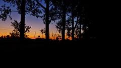 Dusk Colors On Atmospheric Summer Evening (obscure.atmosphere) Tags: deutschland germany hamburg dusk abend sonnenuntergang   twilight dmmerung   sundown sunset anochecer atardecer ocaso sol crepuscule soleil natur nature naturista naturaleza   wald forest bosque selva foret   woods landscape landschaft paisajes region paysage   licht light   ligero lumiere exposure himmel heaven sky cielo cieux   gebsch bush bltter leaves baum bume tree trees plants pflanzen grassland wiese weide rissen nacht night noche nuit