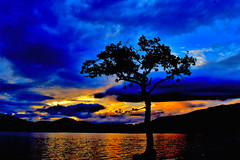 Milarrochy Bay (Claire Quinn) Tags: milarrochybay lochlomond sunset scotland beautiful