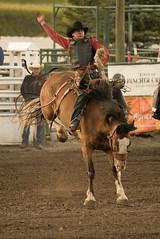 Tak_CPRA_2016- (takahashi.blair) Tags: coachtak rodeo blairtakahashitakahashiblaircoachtakblairtakahashi pincher creek barrel racing bronc rope bareback steer bullriding