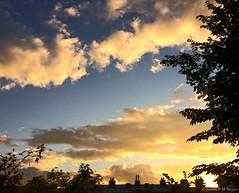 07:57 23.09.16 (jpmm) Tags: 2016 amsterdam sunrise zuid wolken clouds cumulus stratocumulus condensspoor contrail