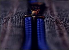 Zip it up (Donna Rowley) Tags: zip zipper teeth grey blue hoodie detail close clothing macro