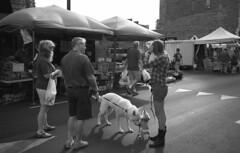 At the Farmers' Market, No Comment (bclook) Tags: leicam6classic m6 jchpan400 jch400 jchstreetpan400 noiretblanc bwfp monochrome blackwhite istillshootfilm filmisnotdead ishootfilm