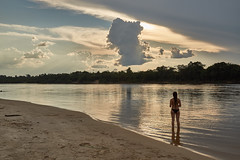 Amazon River-Jungle ( cilantrophotos) Tags: river amazon trip humanitarian jungle southamerica beach girl brazilian nature green wild sunset light clouds life photographers tree amazing lonely planet
