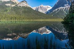 Emerald Lake, Yoho (NettyA) Tags: 2014 bc britishcolumbia canada canadianrockies emeraldlake northamerica sonynex6 yohonationalpark mountains reflection travel water lake reeds