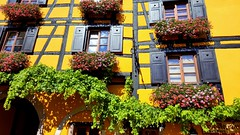 Riquewihr, Alsace, France (Frans.Sellies) Tags: 20160907143646 riquewihr france alsace frankreich frankrijk elsass