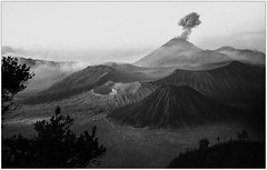Caldeira du Bromo-Mrapi (1997) (jacques-tati) Tags: volcans bromo mrapi caldeira cendres nuage java indonsie matin