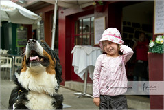 Funny dog | The girl and the Saint Bernard (Stefan Cioata) Tags: street city travel friends vacation dog mountain holiday portugal girl beautiful smile saint childhood bernard outside outdoors photography town photo friend europe child play image sale great stock best explore porto mens getty top10 available bernese outstanding caucasian 4years flickrandroidapp:filter=none