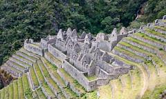 Machu Picchu-52
