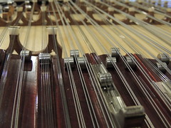 Strings of a Guzheng -:- 1755 (buddhadog) Tags: music dof strings guzheng