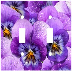 watered violets double switchplate (Charlotte Clarke Geier) Tags: computer print crafts digitalart computercrafts