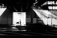 Geisterfahrer. (180Pixel) Tags: silhouette fujifilm abstrakt x10 unibielefeld schwarzweis nachtssindwirallegleich