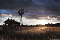 Stand in the Sunshine (Ranga 1) Tags: sunset windmill field sunshine rural farm australian australia melbourne victoria southerncross davidyoung ef1740mmf4lusm southerncrosswindmill canoneos5dmarkii bacchusmarch