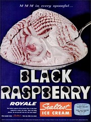 1958 Black Raspberry sealtest Ice cream (1950sUnlimited) Tags: food design desserts icecream 1950s packaging snacks 1960s dairy midcentury snackfood sealtest