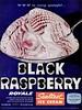 1958 Black Raspberry sealtest Ice cream (1950sUnlimited) Tags: food design desserts icecream 1950s packaging snacks 1960s dairy midcentury snackfood sealtest