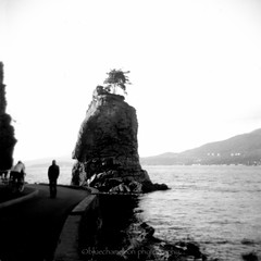 W is for water (bluechameleon) Tags: ocean trees bw man film wet water vancouver mediumformat square blackwhite holga rocks cyclist seawall 120film siwashrock film26 bluechameleon sharonwish bluechameleonphotography