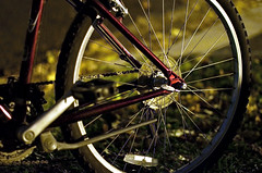 Bicycle (david.l.goodwin) Tags: street columbus ohio red white black leaves bike bicycle wheel yellow night 50mm grey spokes frame pedal ohiostate nighttimephotography offcampus