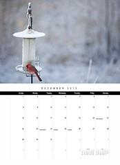 2013 Chiots Run Calendar