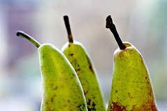 .pears... (ggcphoto) Tags: food green texture nature fruit 50mm dof pears bokeh stems freshfruit shallowdof foodphotography sonyalpha threepears gettyimagesirelandq12012