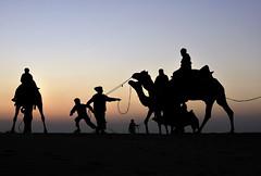 Thar desert, Jaisalmer, Rajsthan (MSLD!) Tags: matchpointwinner mpt217