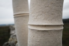 limestone carving (janela silvestre) Tags: stone carving bamboo escultura limestone pedra bambu cantaria serradeaire calcrio talhar