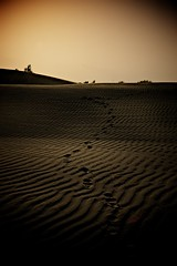 Needs (*ZooZoom) Tags: india sand asia desert quote earth footprints xp needs jaisalmer overlap shewasagirlwhoknewhowtobehappyevenwhenshewassad