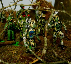Jungle Camo B.A.T.S (00zxcvb) Tags: cobra joe gi