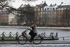 Gentle Snow (Mikael Colville-Andersen) Tags: winter fashion bike bicycle copenhagen denmark cycling blog vinter hiver danish bici chic mode danmark kopenhagen fahrrad vélo københavn sykkel cykel bicicletta copenhague cykling streetstyle girlsonbikes cyclechic copenhagencyclechic cykelpige vintersyklister