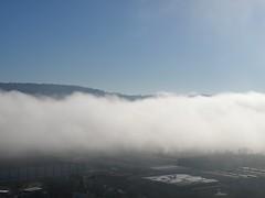 mare di nebbia (g.fulvia) Tags: fog piemonte nebbia cherasco cuneese nebbiadiavvezione